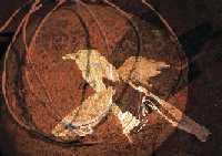 Kulturmeldingfugl (liten)