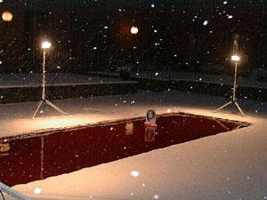 Dror Feiler: Snøhvit og galskapens sannhet