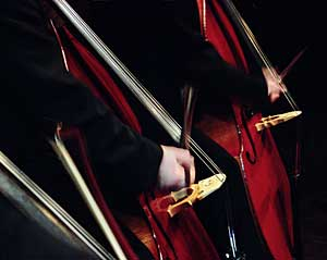 Bergen Filharmoniske Orkester - kontrabasser (foto: Eirik Reitan)