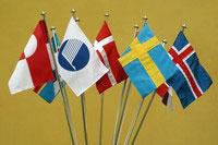 Nordisk Råd_flagg (Foto: norden.org)