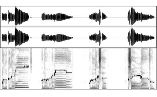 Boken er illustrert med lydbølge-skjermdumper