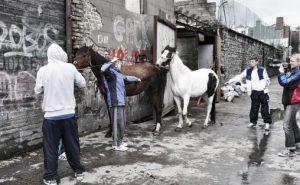 Kristin Vollset filmer guttene i hestehallene i Dublin